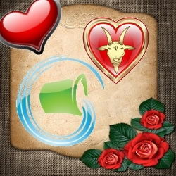 Zodiac Compatibility Capricorn and Aquarius